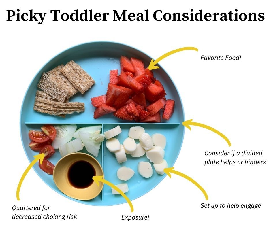 Example of toddler meal with 5 things to consider when planning.